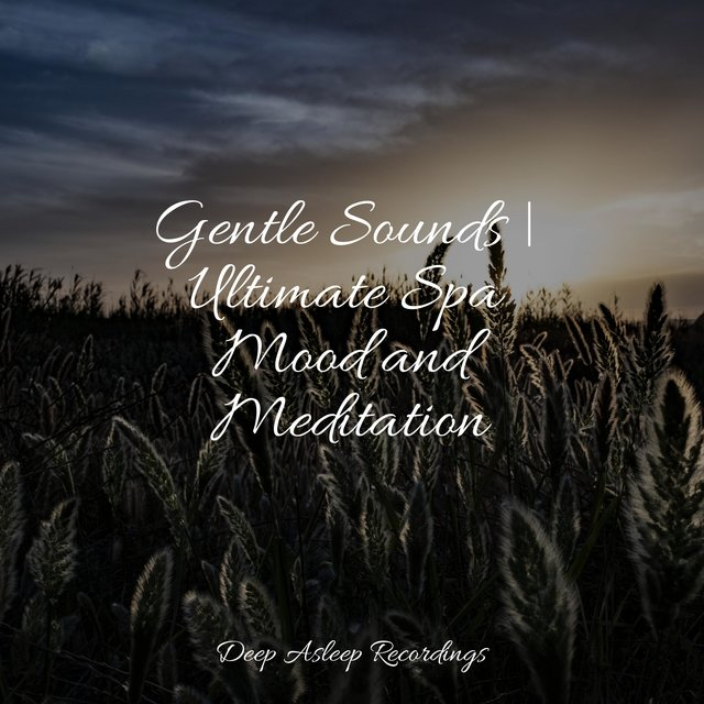 Gentle Sounds | Ultimate Spa Mood and Meditation