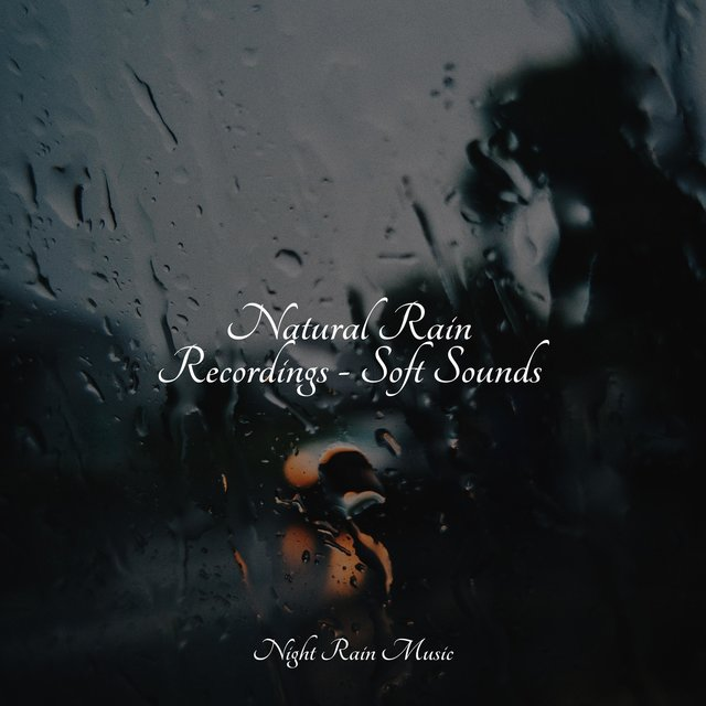 Natural Rain Recordings - Soft Sounds