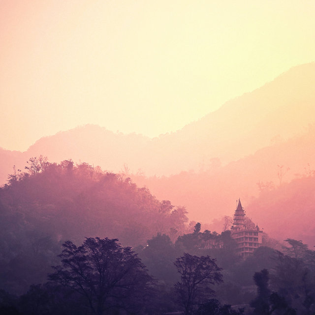 50 Sounds of the the Asian Forest - Calming Sounds for Deep Sleep