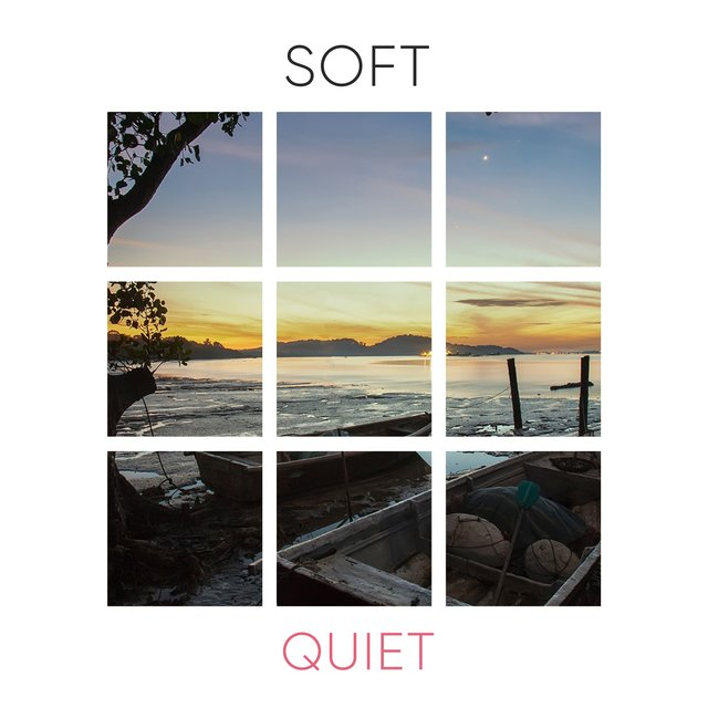 # 1 Album: Soft Quiet