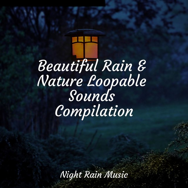 Beautiful Rain & Nature Loopable Sounds Compilation