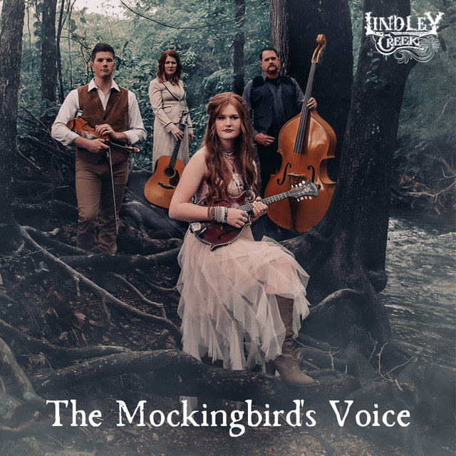 The Mockingbird's Voice