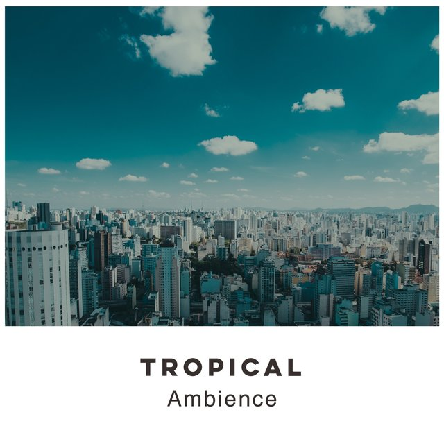 # 1 Album: Tropical Ambience