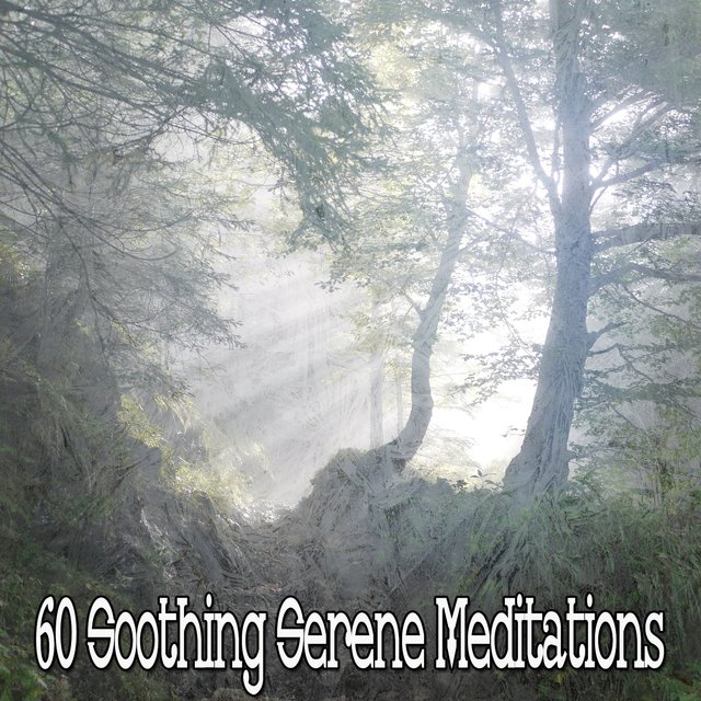 60 Soothing Serene Meditations