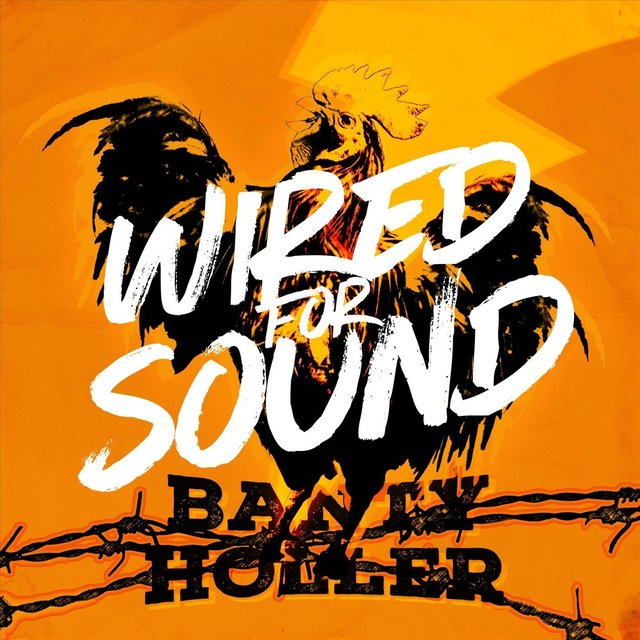Cover art for album Wired for Sound by Banty Holler