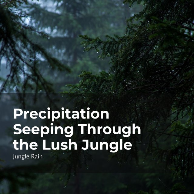 Precipitation Seeping Through the Lush Jungle