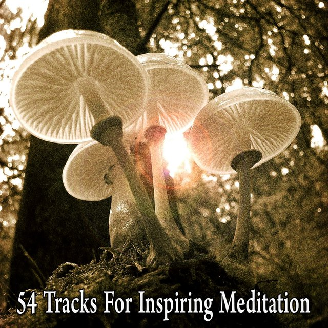 54 Tracks for Inspiring Meditation