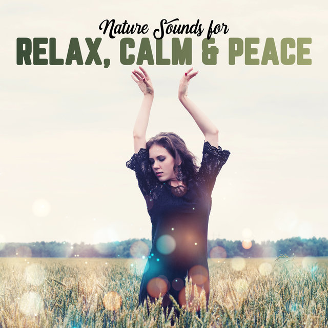 Nature Sounds for Relax, Calm & Peace: 2020 Piano Melodies with Beautiful Nature Background, Relaxing Sounds of Forest, Water, Birds and Others, Music Perfect for Total Rest and Calm Down, Regain Inner Peace