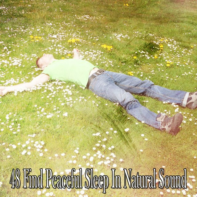 48 Find Peaceful Sleep in Natural Sound