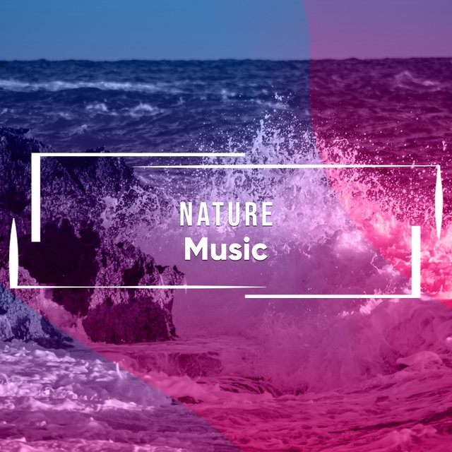Calming Nature Music