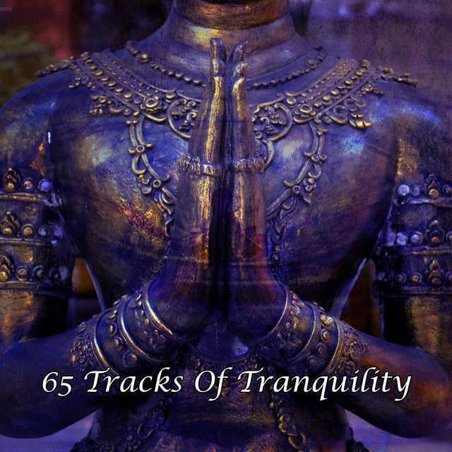 65 Tracks Of Tranquility