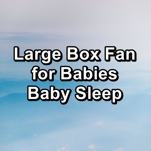 Large Box Fan for Babies Baby Sleep