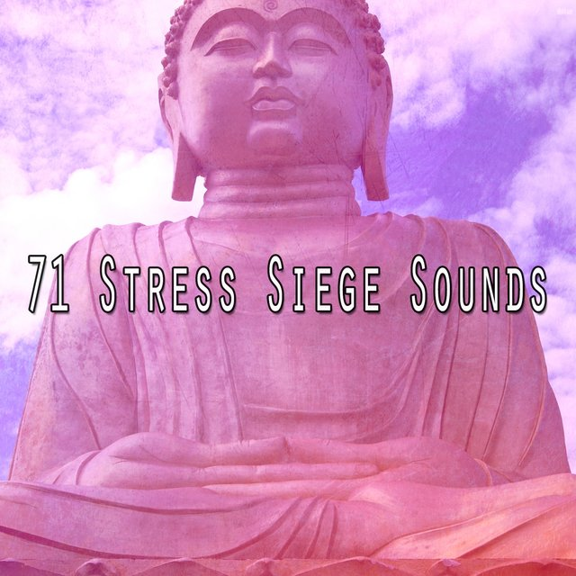 71 Stress Siege Sounds