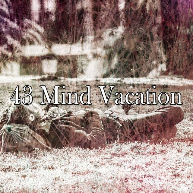 43 Mind Vacation
