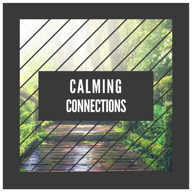 Calming Connections