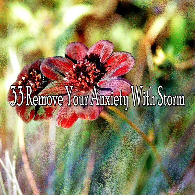 33 Remove Your Anxiety with Storm