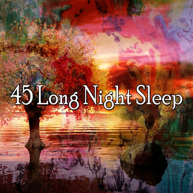 45 Long Night Sle - EP