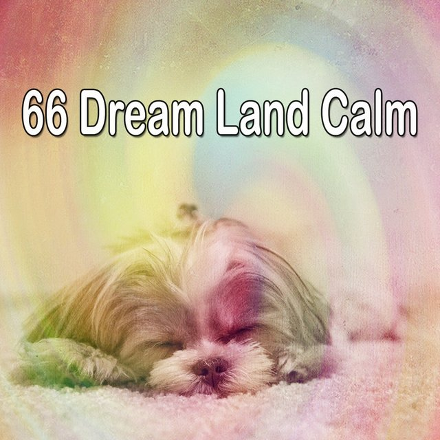 66 Dream Land Calm