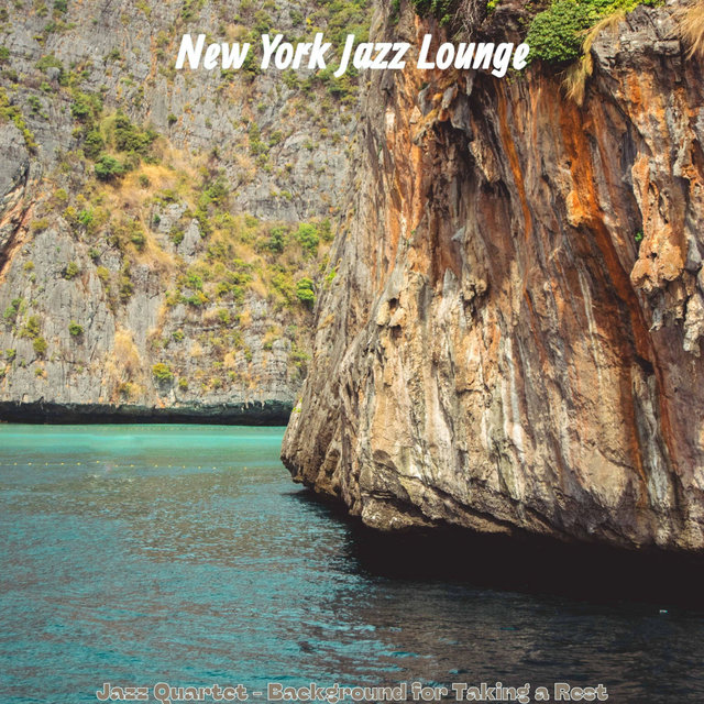 Jazz Quartet - Background for Taking a Rest