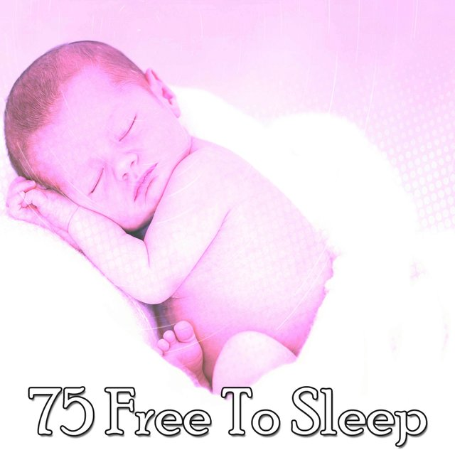 75 Free to Sleep