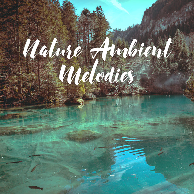 Nature Ambient Melodies: Sounds of Water, Ocean to Cure the Insomnia, Rainy Day, Calm Down, Good Sleep, Soothing Music, Bedtime Ritual