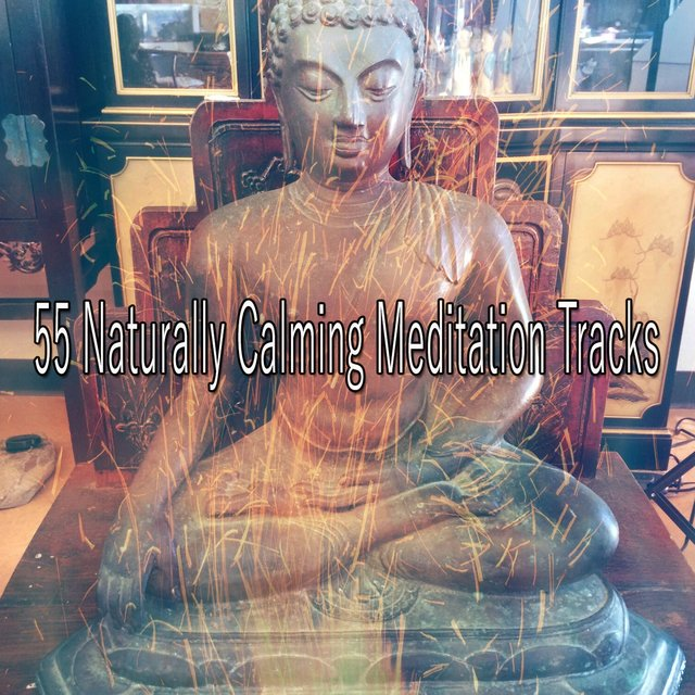 55 Naturally Calming Meditation Tracks