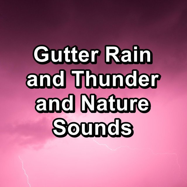 Gutter Rain and Thunder and Nature Sounds