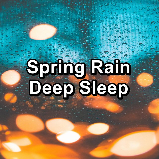 Spring Rain Deep Sleep