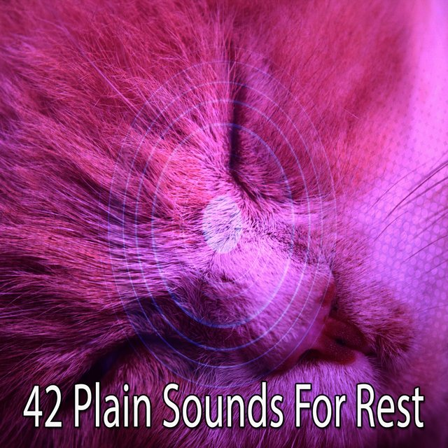 42 Plain Sounds for Rest