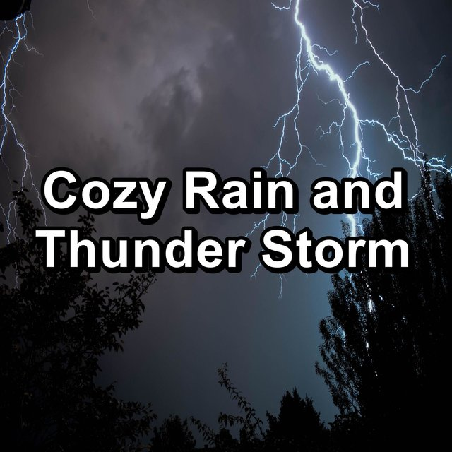 Cozy Rain and Thunder Storm