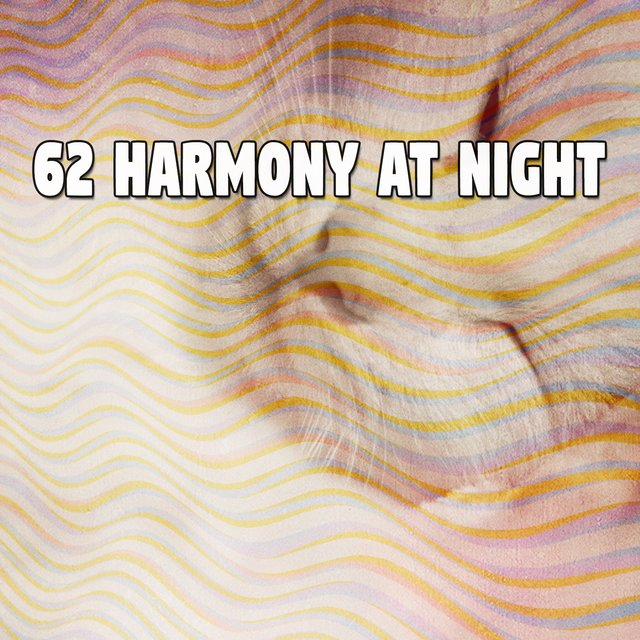 62 Harmony At Night