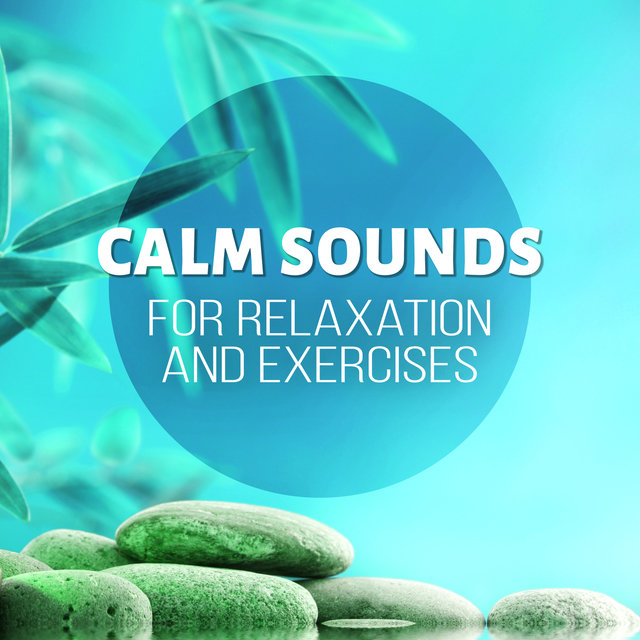 Calm Sounds for Relaxation and Exercises - Music for Stretching, Pilates & Yoga, New Age Music for Backpain Exercises for Women, Pregnancy Exercises and Workouts