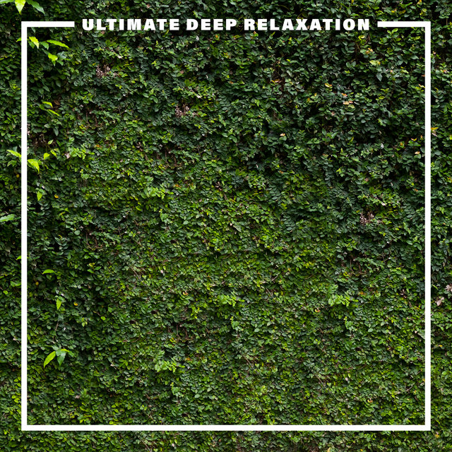 Ultimate Deep Relaxation – Journey with New Age Healing Sounds