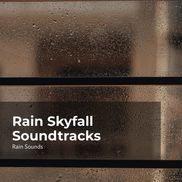 Rain Skyfall Soundtracks