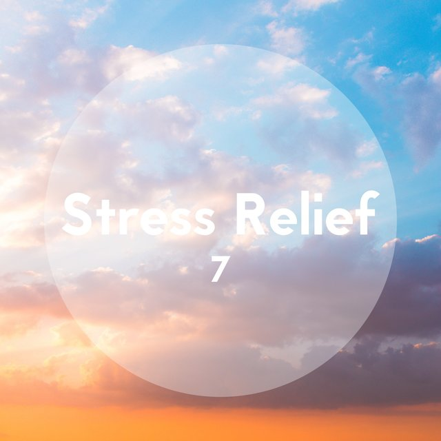 Stress Relief, Vol. 7