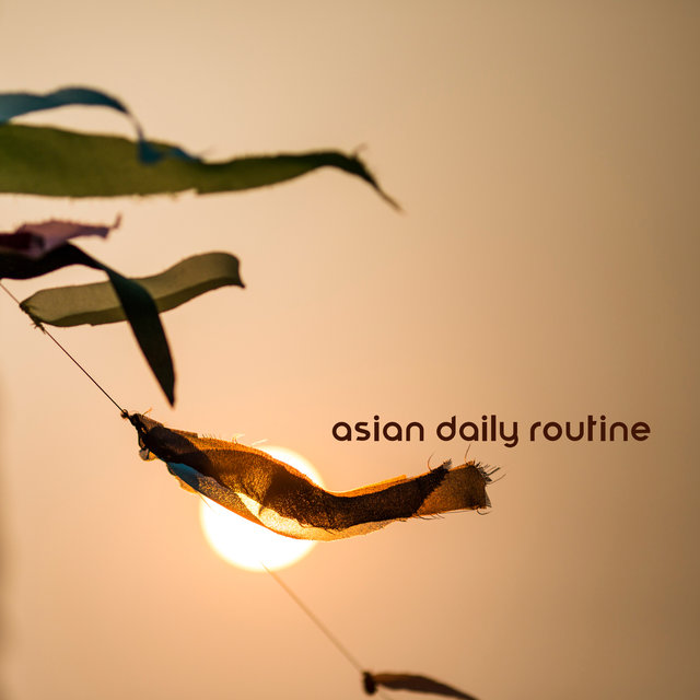 Asian Daily Routine - Morning Yoga or Meditation, Relaxation Techniques, Body Balance and Mind, Zen, Calmness
