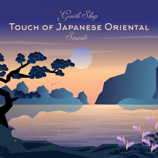 Gentle Sleep Touch of Japanese Oriental Sounds: 2019 Ambient Music of Asia for Sleep, Rest & Relax