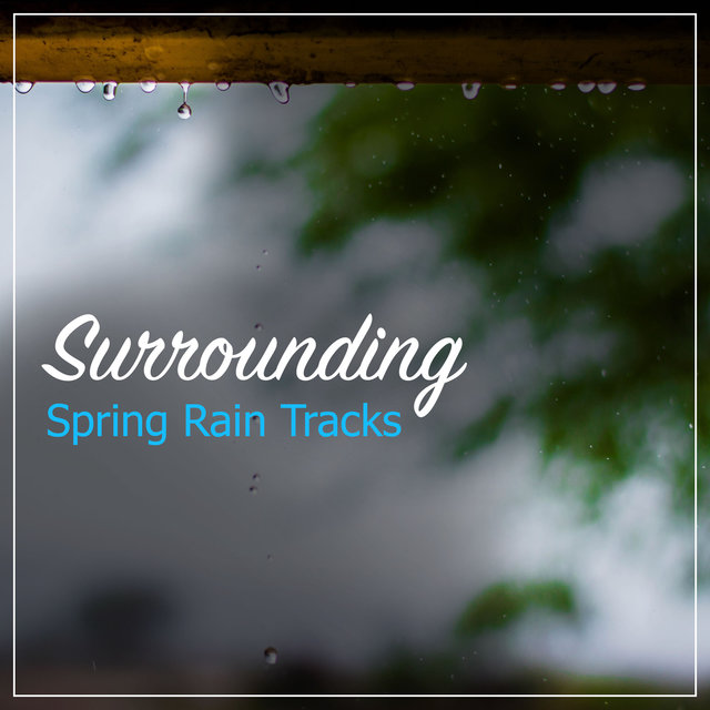 #12 Surrounding Spring Rain Tracks
