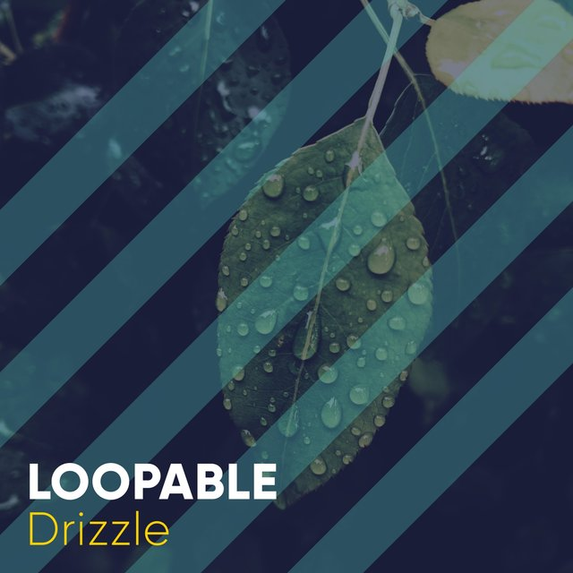 # 1 Album: Loopable Drizzle