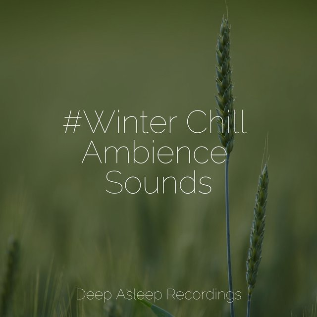 #Winter Chill Ambience Sounds