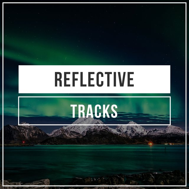 Reflective Library Tracks