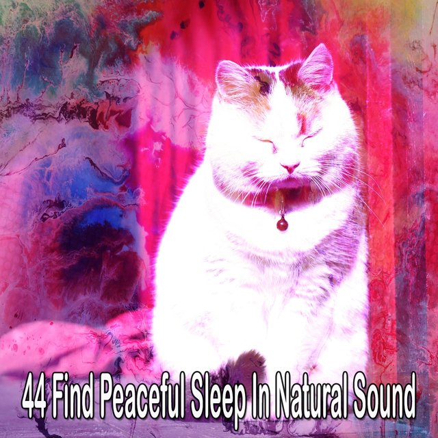 44 Find Peaceful Sleep in Natural Sound