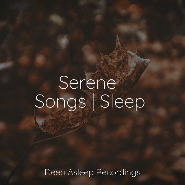 Serene Songs | Sleep