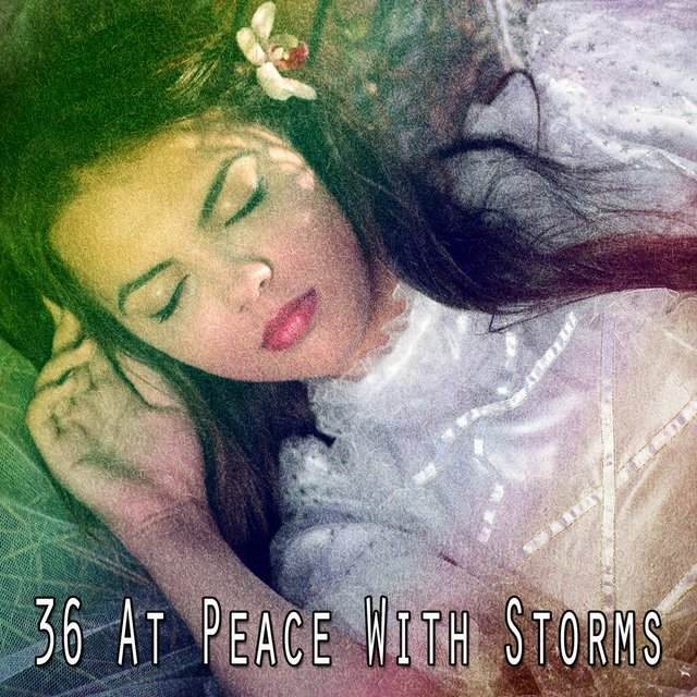 36 At Peace with Storms