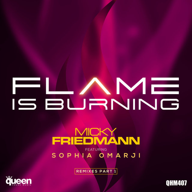 Flame Is Burning (Remixes Part 1)