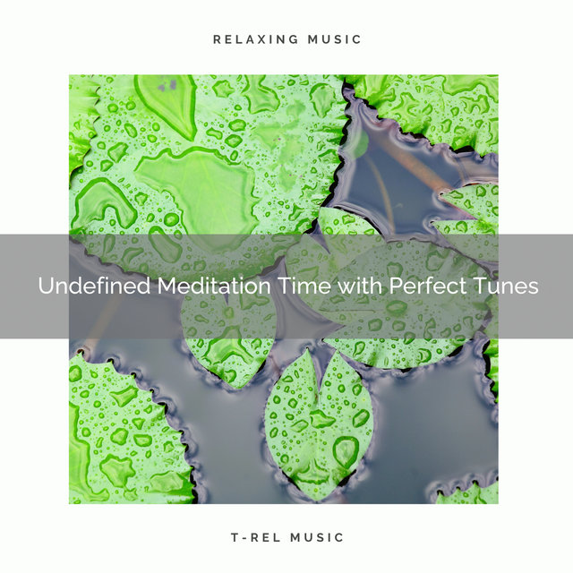 2020 Best: Undefined Meditation Time with Perfect Tunes