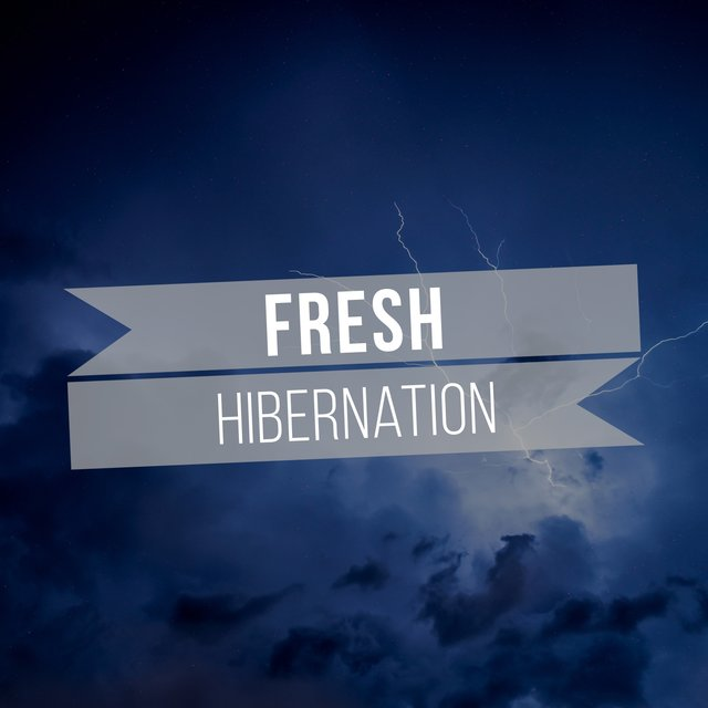 # 1 Album: Fresh Hibernation