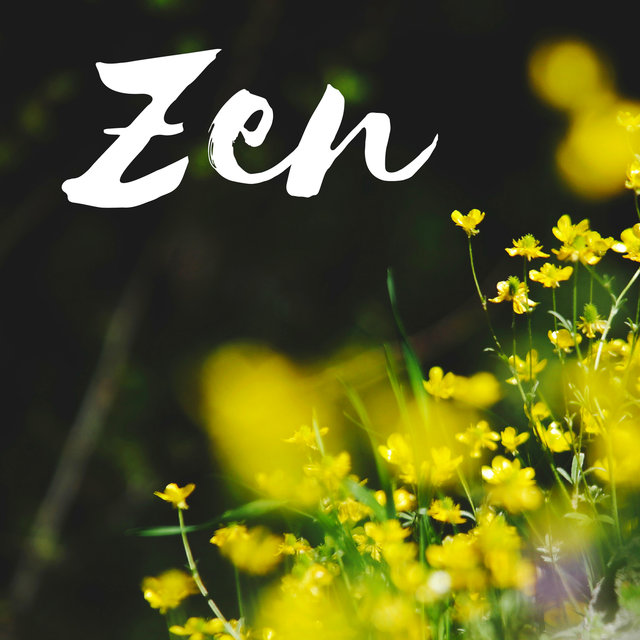 Zen CD - Pure Sounds of Nature Mp3 Collection with Musical Background