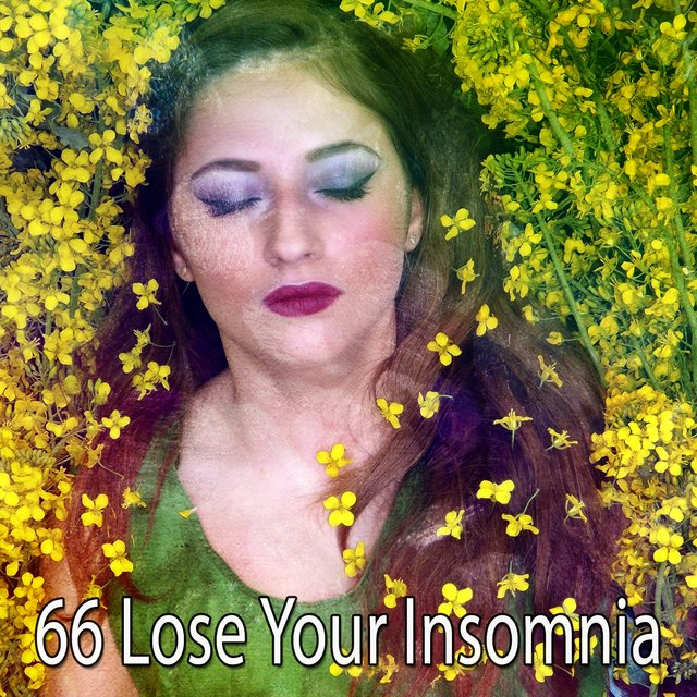 66 Lose Your Insomnia