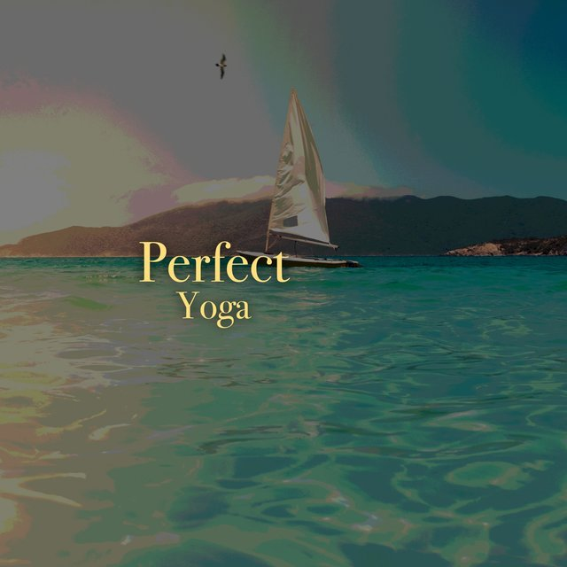 # 1 Album: Perfect Yoga